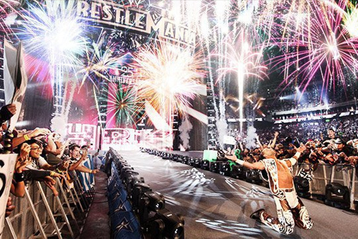 WWE Superstar Shawn Michaels making his grand entrance at WrestleMania 25