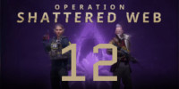 Operation Shattered Web - Week 12 Challenges