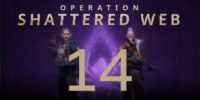 Operation Shattered Web - Week 14 Challenges
