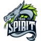 Logo for Team Spirit