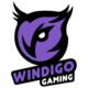 Logo for Windigo Gaming